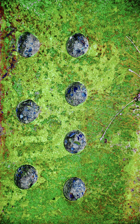 LEE ANN WOLFIN  Green Rust and Bolts Mixed Media 20 X 30