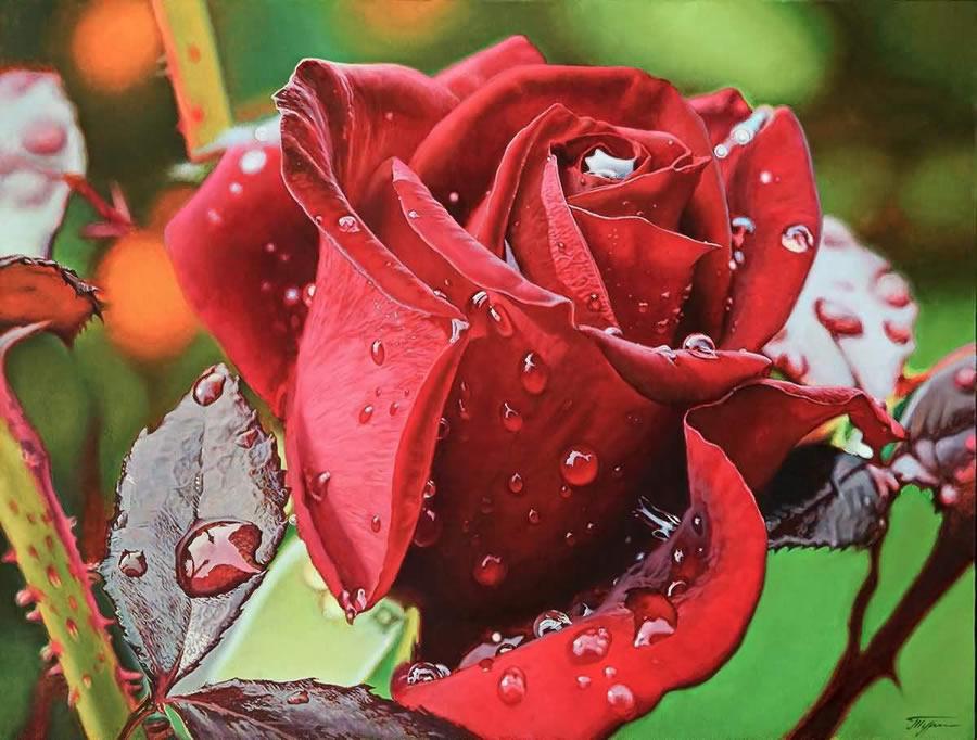 OLEG TURCHIN  Red Rose Original Oi 30 X 40