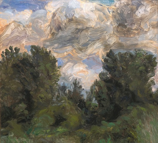 LIZA VISAGIE  A Study of Clouds Original Oil 10 X 11