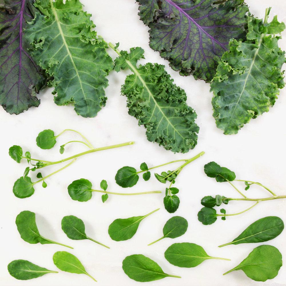 leafy greens 072016_7393.JPG