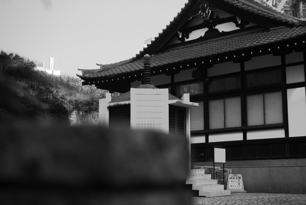 Building_001.jpg