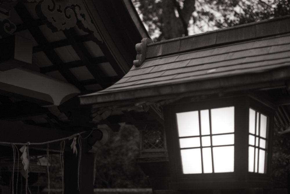 Roof_001.jpg