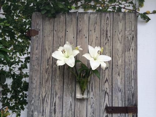 Rectangular Wall Flower Vase The Garden Room Cafe At Shoogie Boogies