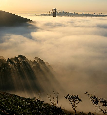 San Francisco in fog.jpg