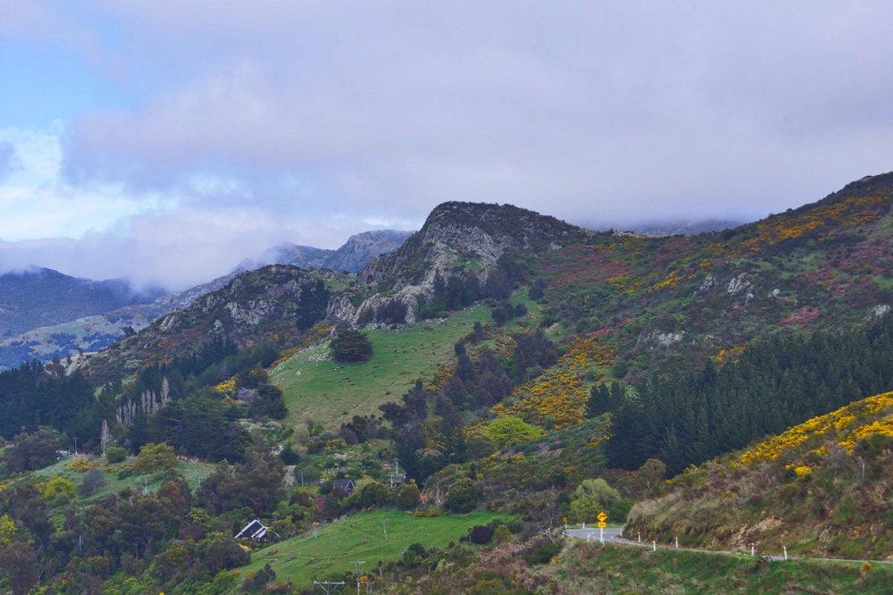 hills round bay.jpeg