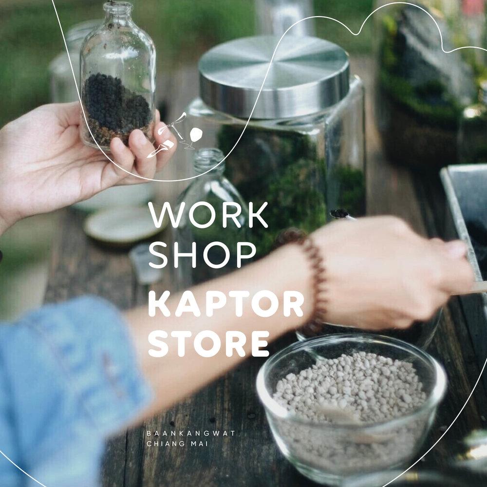 Kaptor Store