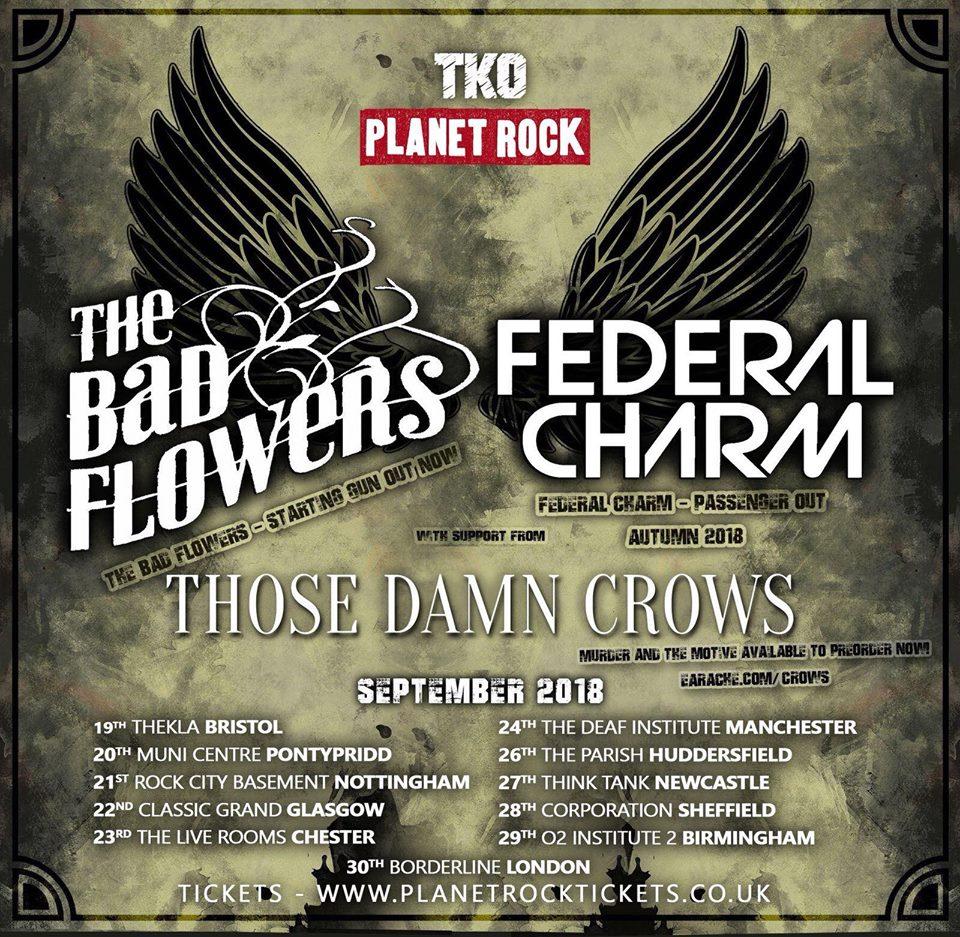 those_damn_crows_tour.jpg