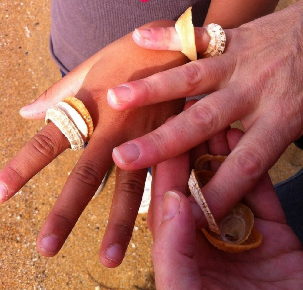 Shell fingers.