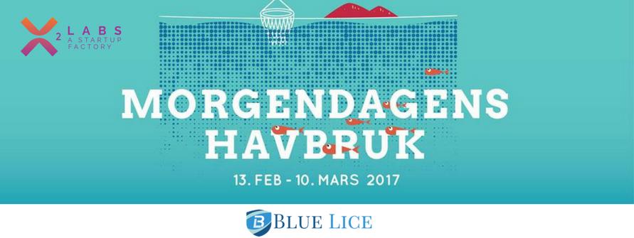 blue lice morgendagens havbruk (2).png