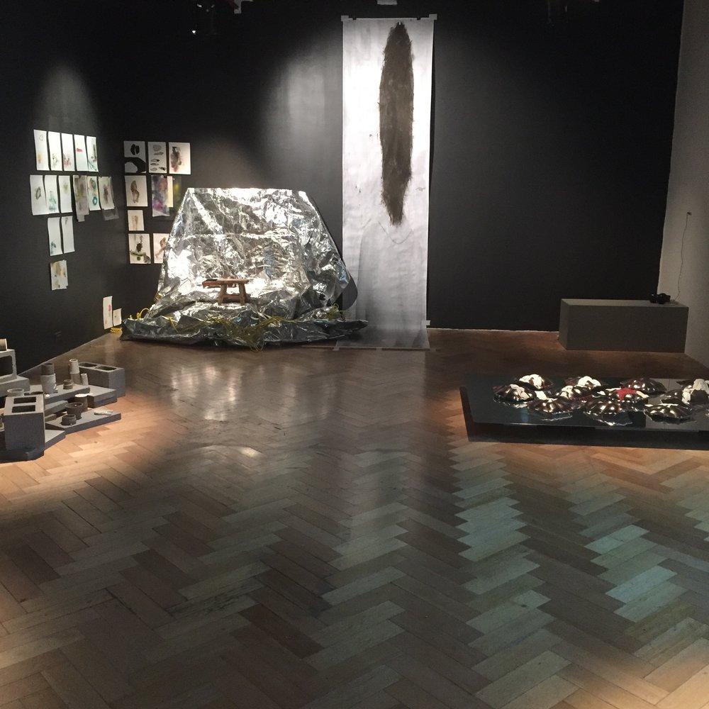 Installation view, Alterfact, Angela Thirwell, Sarah Mary Chadwick, Adam Ridgeway