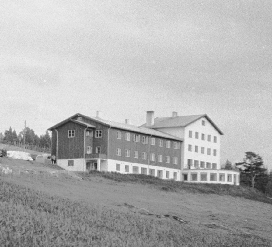 Dalseter around year 1952