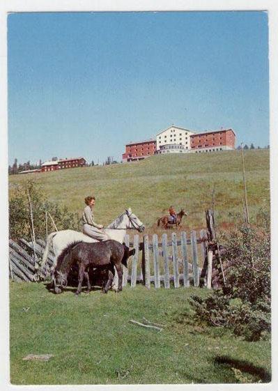 Dalseter around year 1964-65