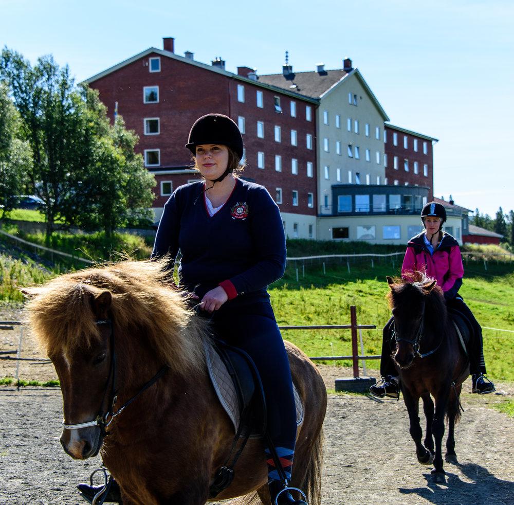 horsebackridinginsummer