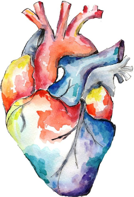 watercolor heart.jpg