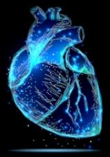 Heart rendered.jpg