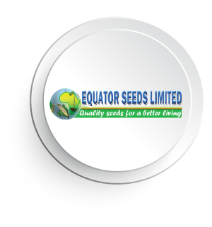 Equator-Seeds.png