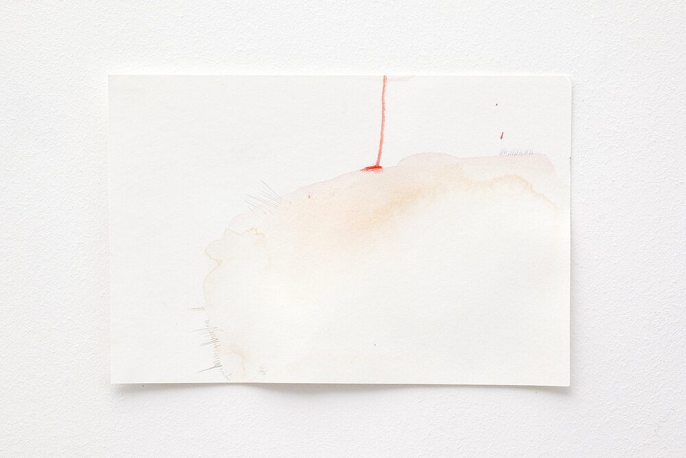 <p>Instant Drawings – Barbara Müller</p>