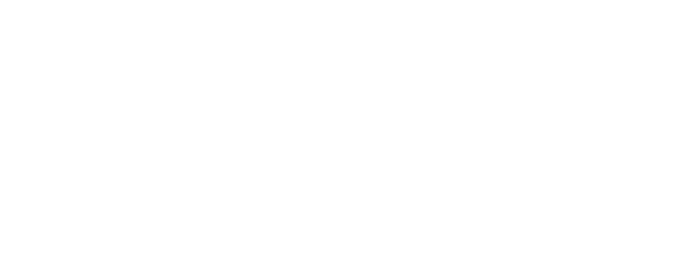 audioquest-dragonfly-cables.png