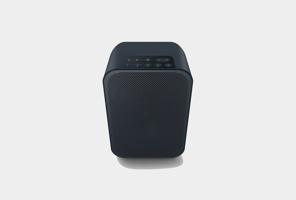 Bluesound PULSE FLEX 2i Portable Multi-room Wireless Speaker ...