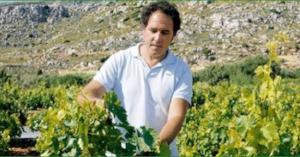 Gianni tending his vines.