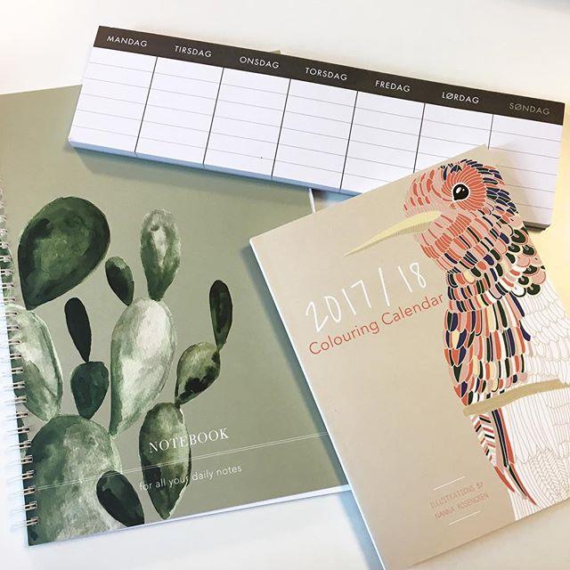 Ny notesbog, ugeplan og kalender i Rema 🎉 29kr/stk. i denne uge