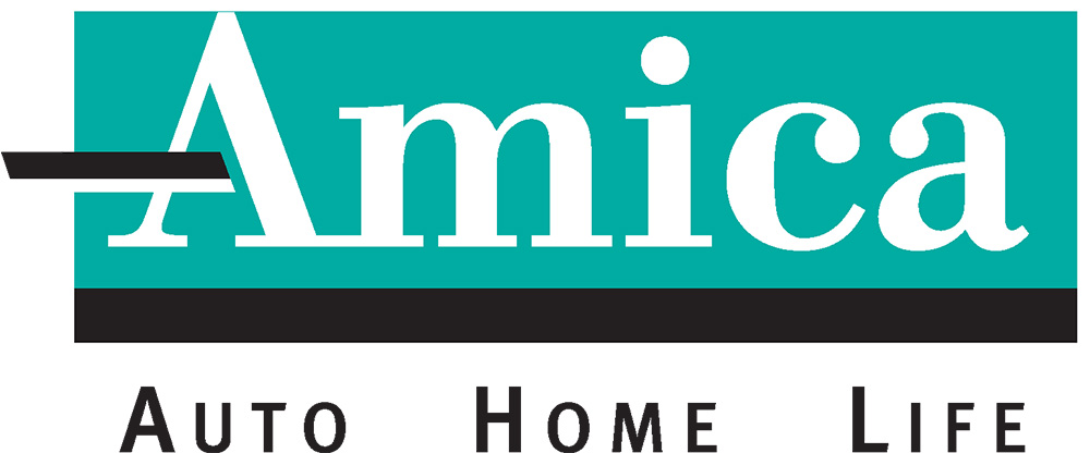 Color Amica Logo black AHL_2C.jpg