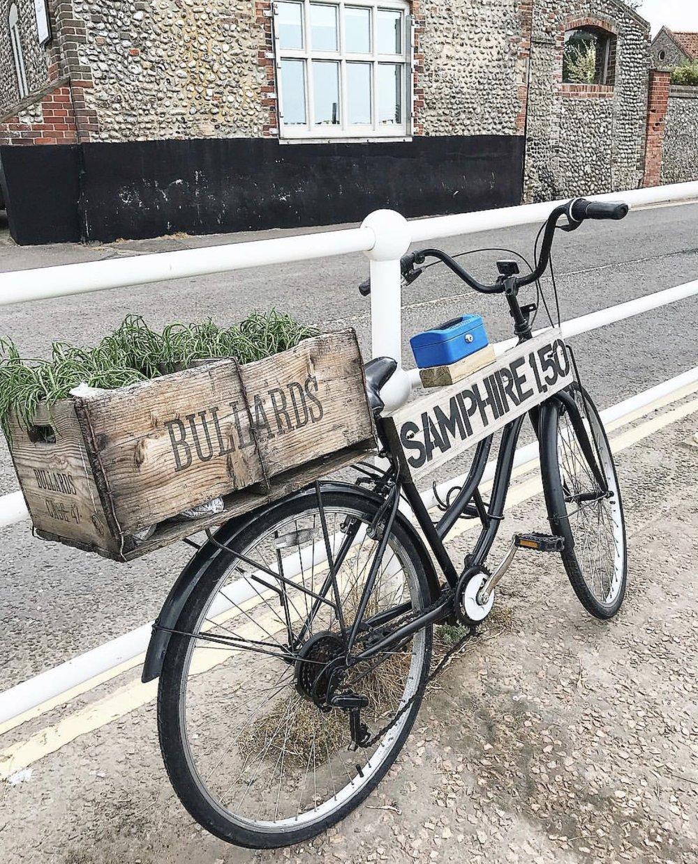 bicycle.jpeg