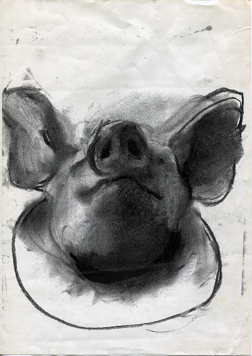 Salmon-PigHead