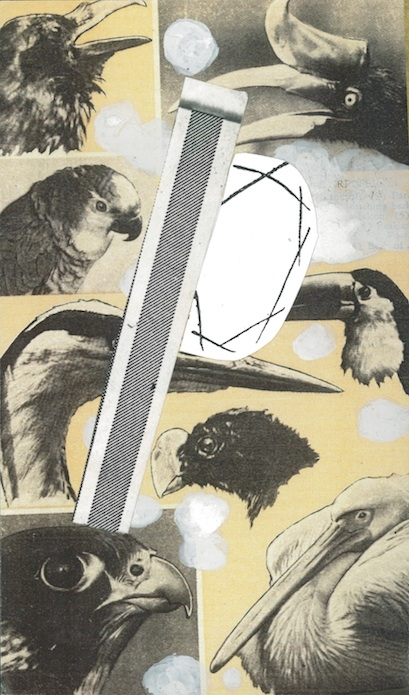 """Caw/Caw/Caw""  12 x 5in.  Montage, Collage, Whiteout."