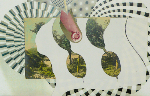 Coil   12 x 17in.  Collage