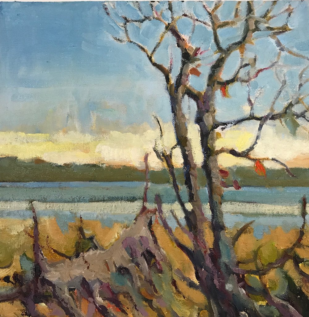 Great Bay, oils, 12 x 12
