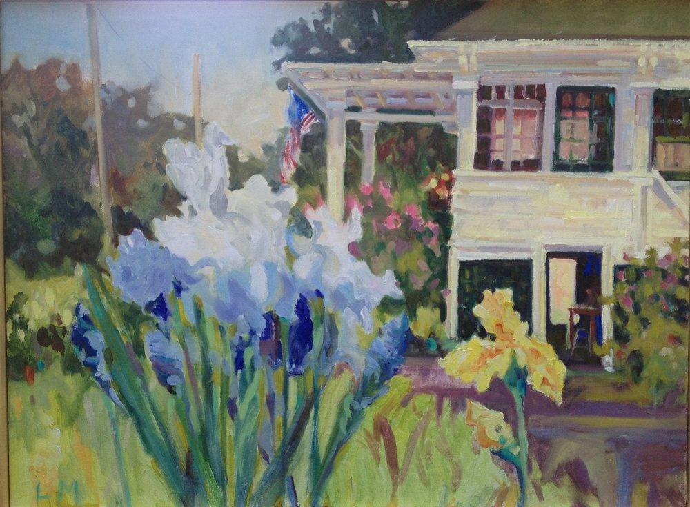 Flag Iris, oils, 16 x 20