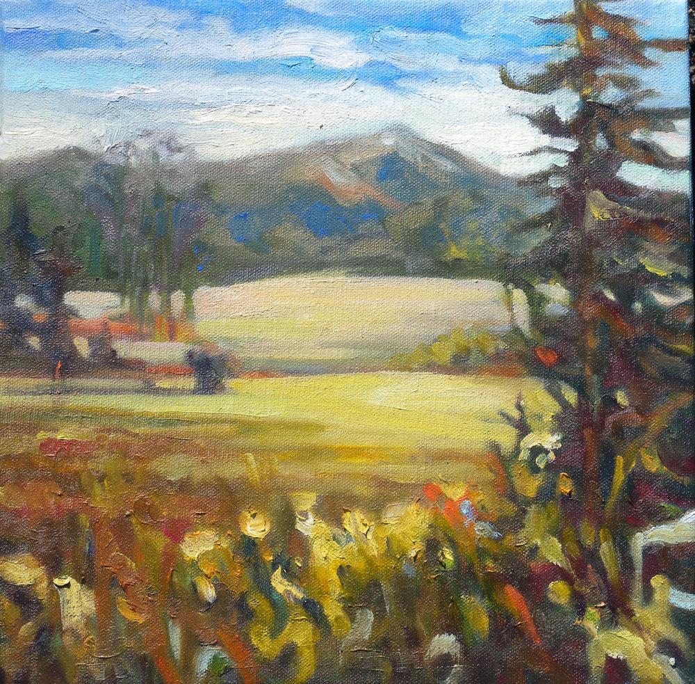 Mt Lafayette, oils, 12 x 12