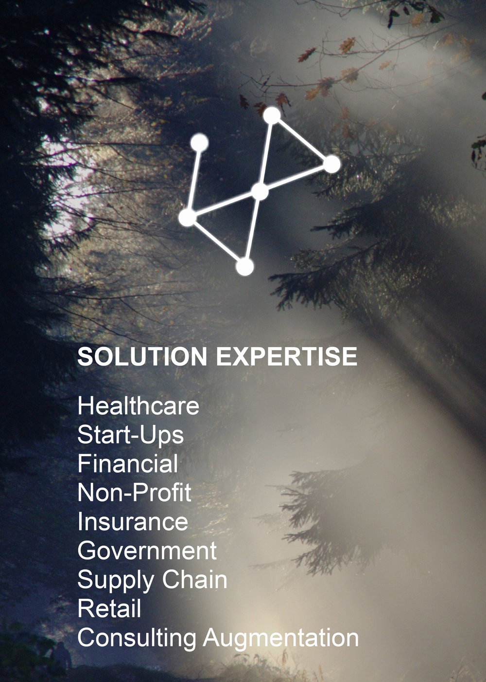 Solution-Expertise.jpg