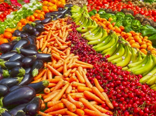 Low calorie density foods