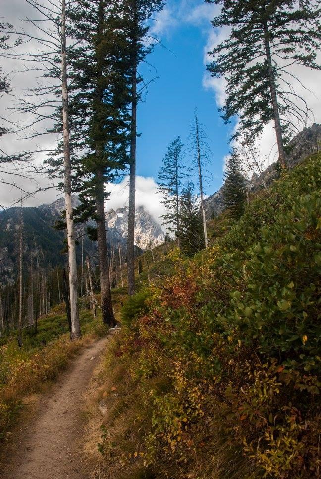 Jenny Lake trail.
