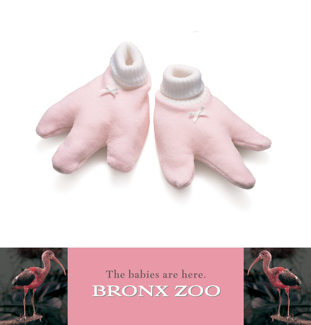 "Bronx Zoo ""Booties"""