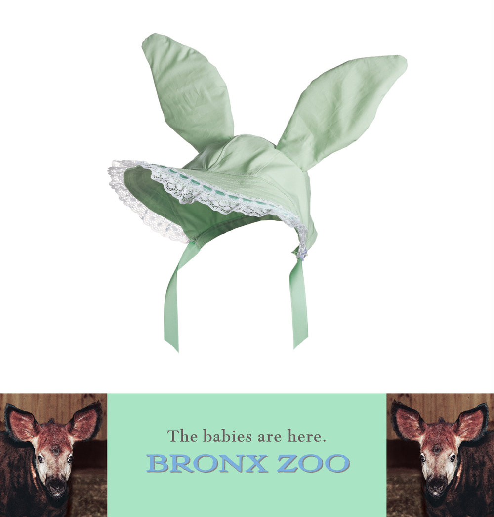 "Bronx Zoo ""Bonnet"""