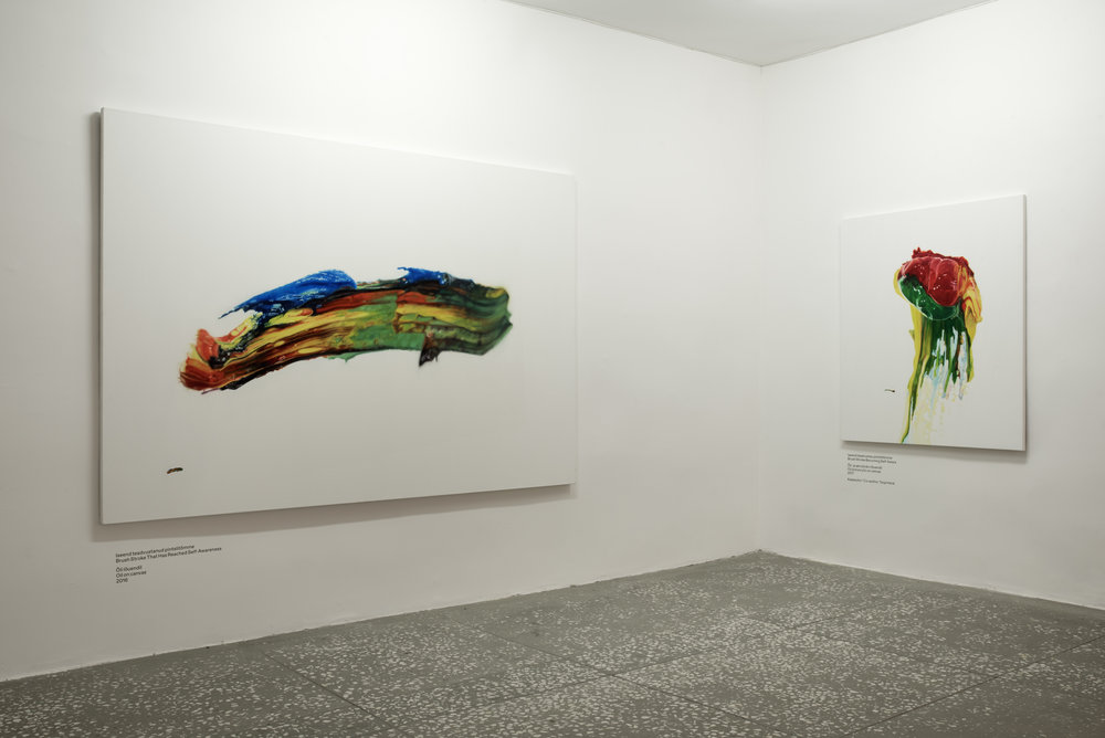 exhibition view in Tallinna Linnagalerii. Photo by Karel Koplimets
