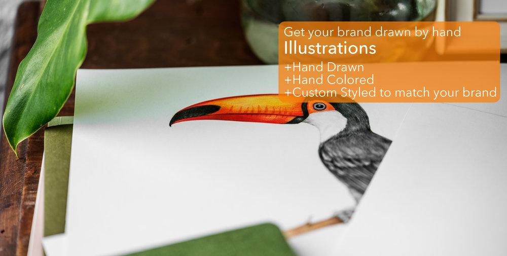 IllustrationBanner.jpg