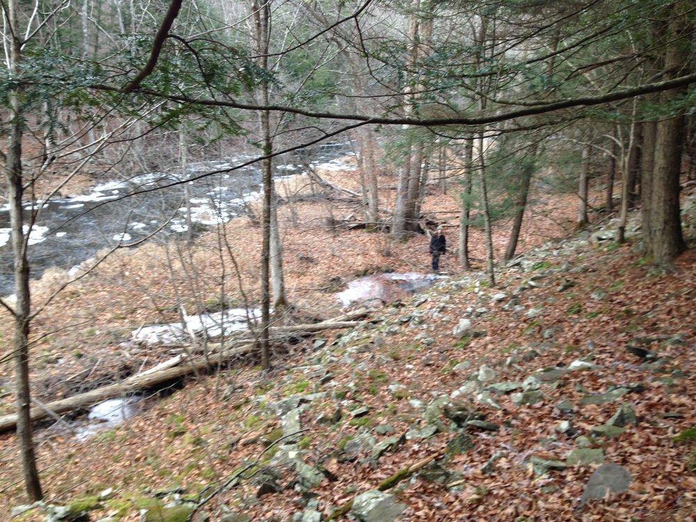 Lee in the woods.JPG