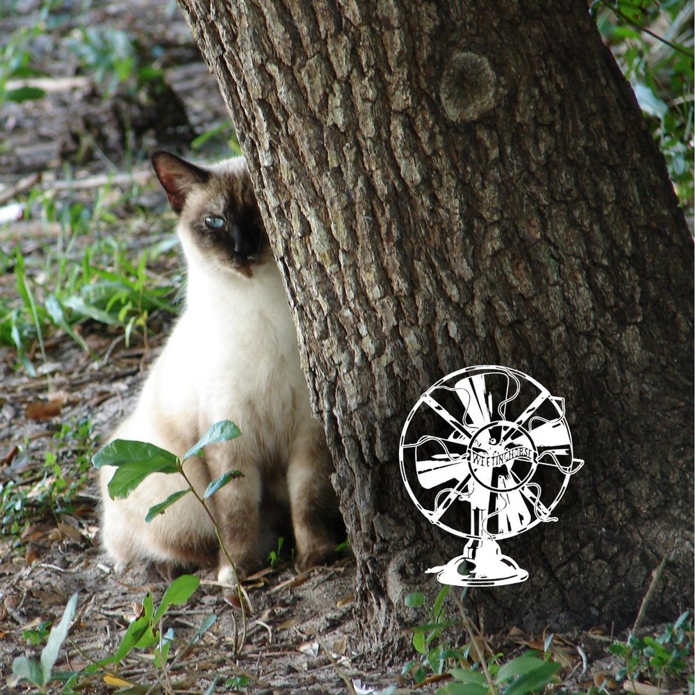 Special Episode 8's cover: a Siamese cat lurks behind a tree.