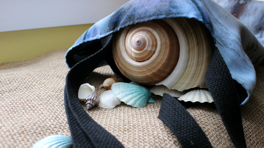 I don't know what that delightfully spirally seashell is called, but doesn't it look at home all tucked inside of the bag? It looks so cozy! ^-^