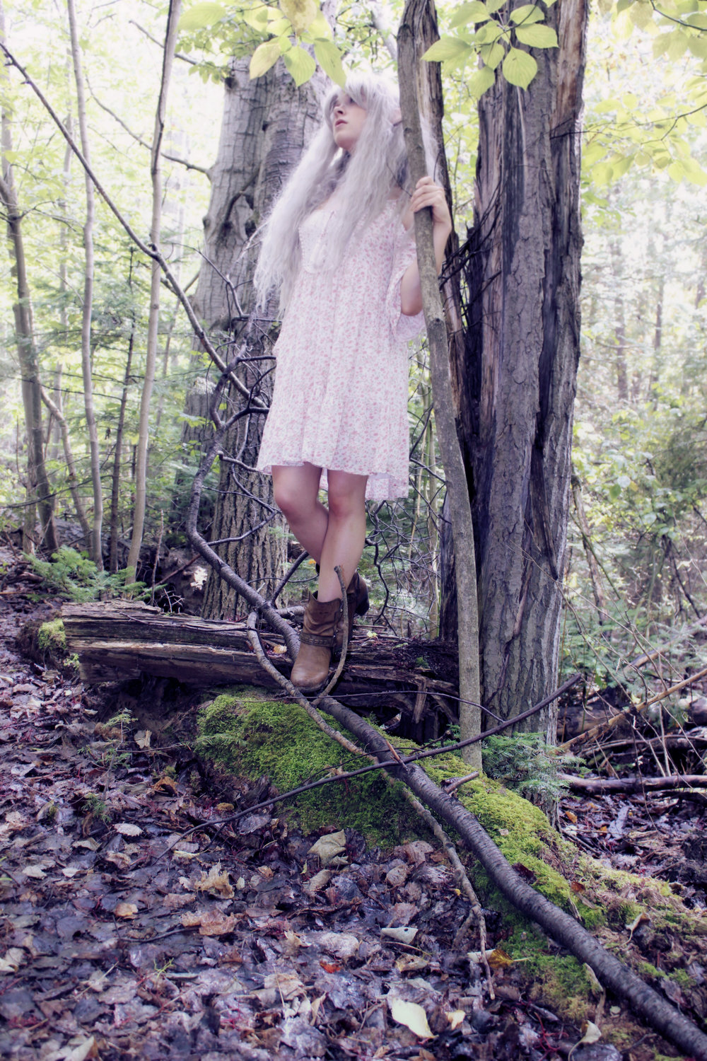 An elf in the woods: A female elf with silver hair standing on a log in the forest. In this fantasy cosplay costume, Phantom is wearing latex elf ears from Aradani Costumes.