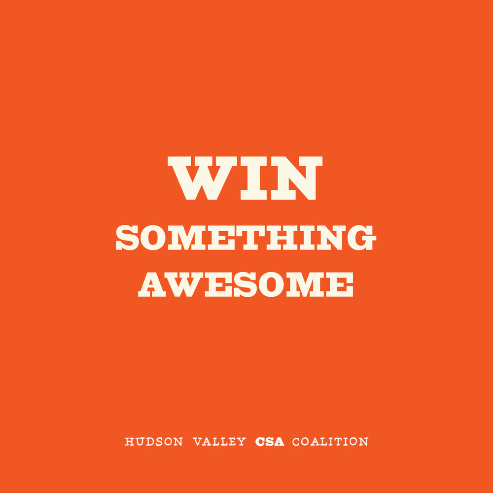 Contest-Graphic-Instagram.jpg