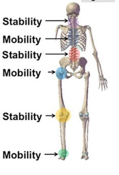 Mobility+pic.png
