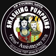 Smashing Pumpkins 20th Anniversary Tour. 2008. Bass and background vocals.