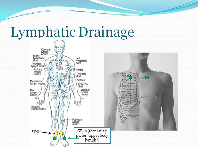 Lymph drains zest beauty boutique non invasive face and body lymphatic drainage slideg ccuart Gallery