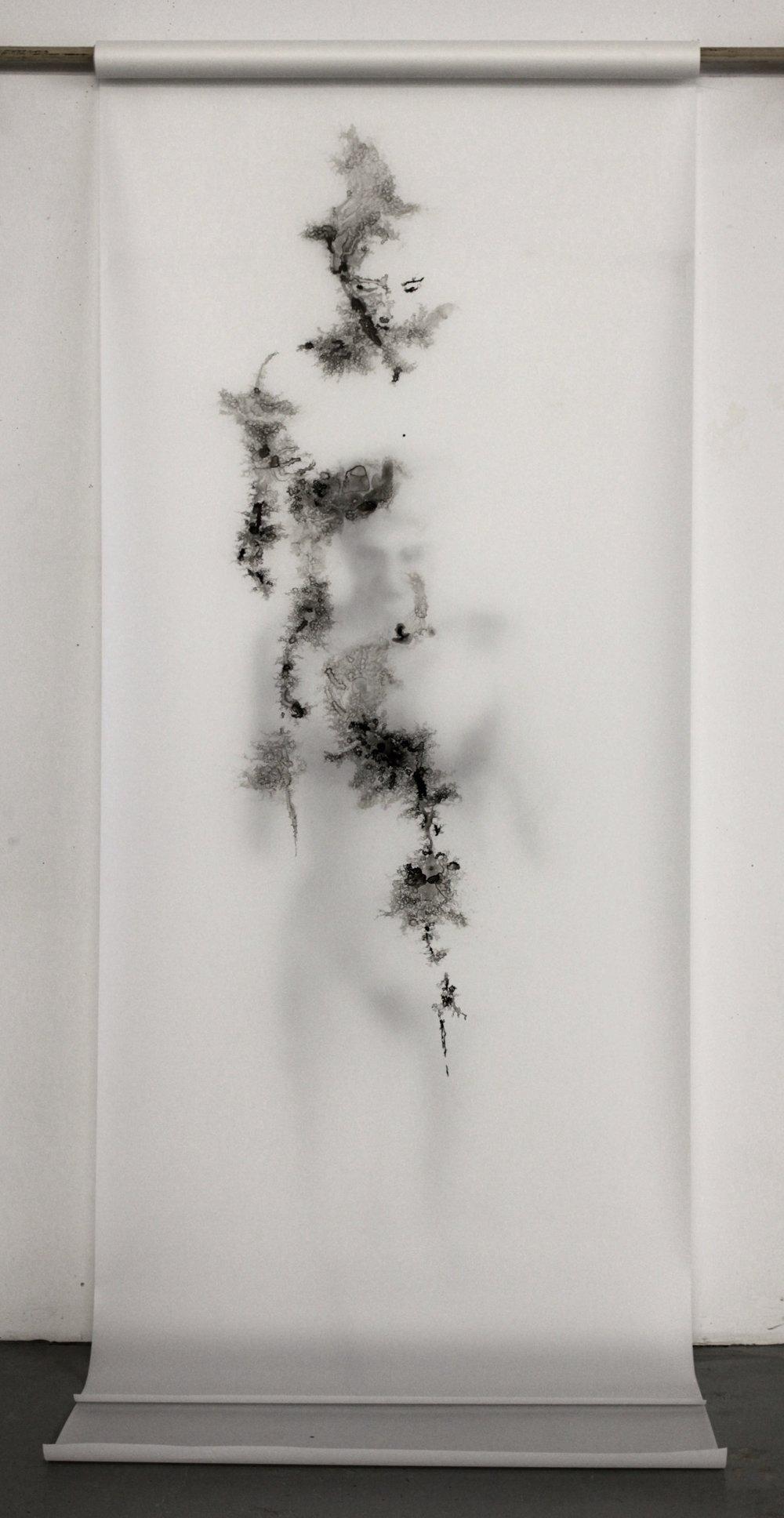 Fall (1/2), 2014