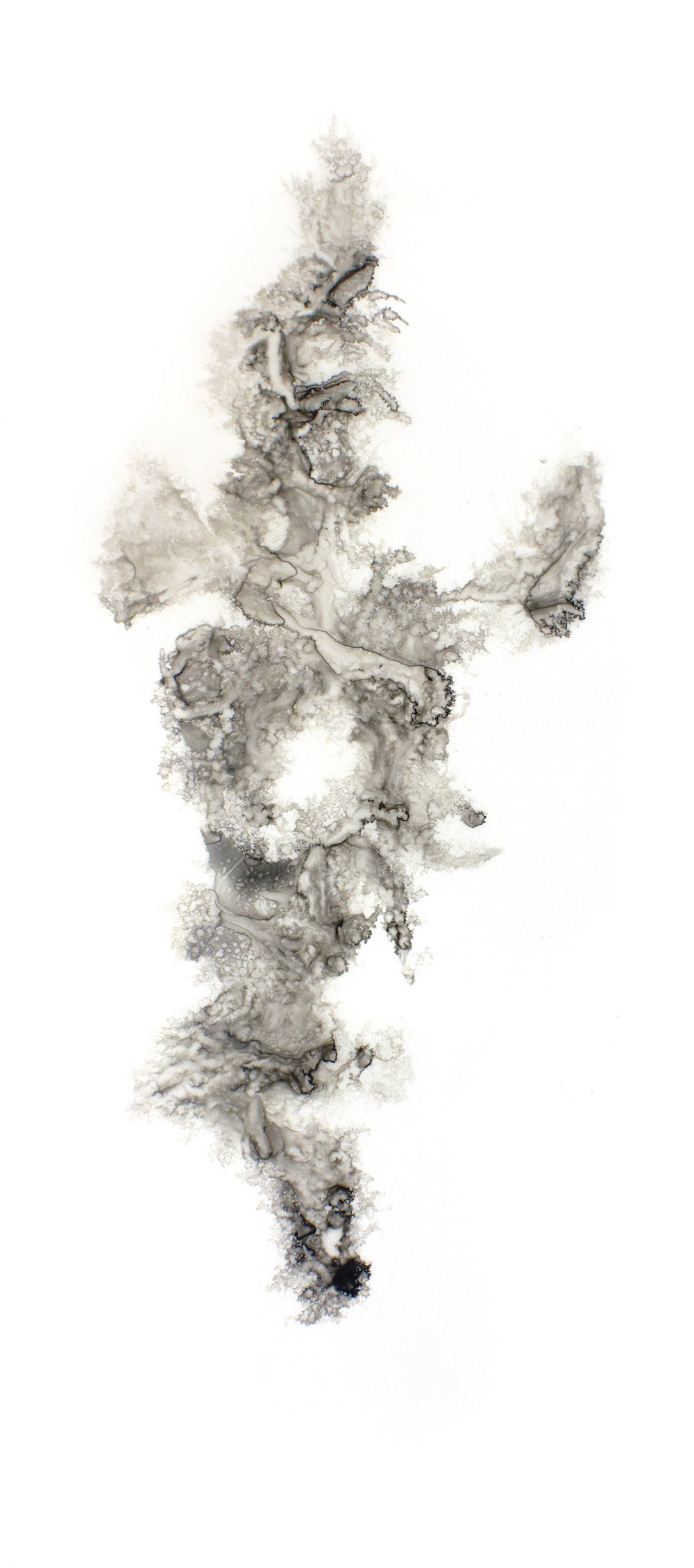 "Icarus XI | ink | 24"" x 52"""